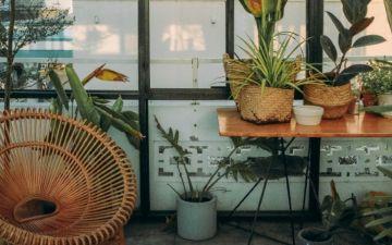 Como transformar a sua casa num bonito jardim