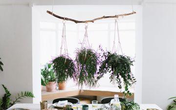 Gostava de ter este suporte para plantas? Faça o seu!