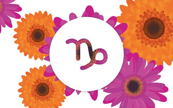 Flores para cada signo: saiba qual é a sua e como a tratar