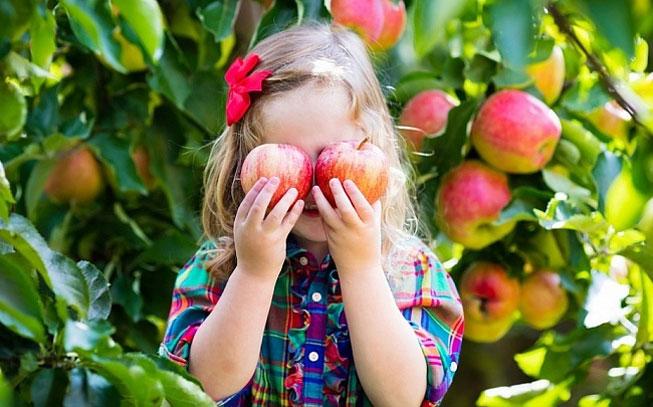 Frutas e legumes: 9 formas para convencer o seu filho a comer bem