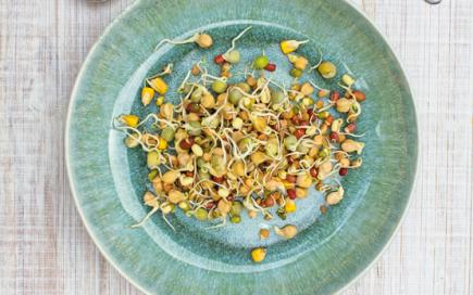 Nutrição funcional: O que é e por que faz bem ao seu intestino