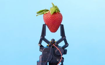 Alerta tendência: a que vai saber a comida no futuro?