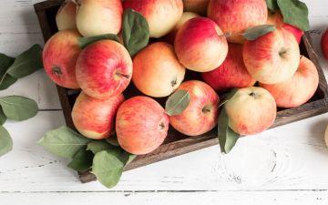 A Horta da Maria: receba um cabaz de frutas e legumes à porta de casa