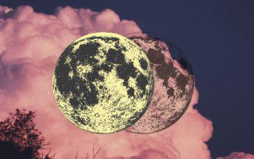 Lua nova em Caranguejo. Priorizar os afectos