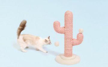 16 arranhadores para gato que não estragam a decoração de casa