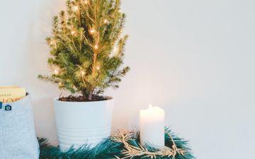 Árvores de Natal, das clássicas às mais originais para uma casa em festa