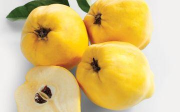Marmelos: uma fonte de antioxidantes que protege de doenças crónicas