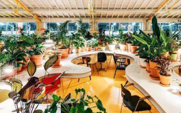 Espaços de coworking em Lisboa e no Porto