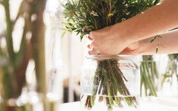 6 dicas para fazer as flores durem mais tempo